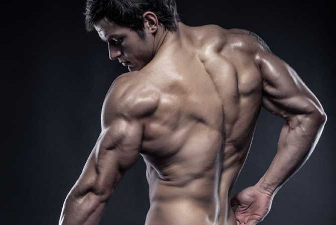 powerful triceps