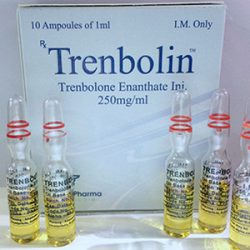 Trenbolone Enanthate 250mg for sale