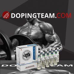 Magnum Nandro-Plex 300 on dopingteam.com